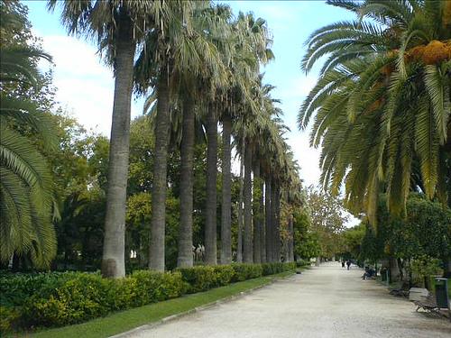 jardines de viveros en valencia viveros